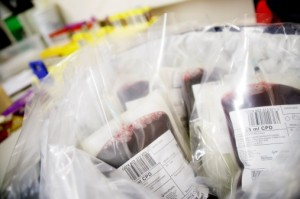 Bags of donated blood, close-up
